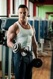 Phisique fitness competitor works out in gym lifting dumbbells royalty free stock photos