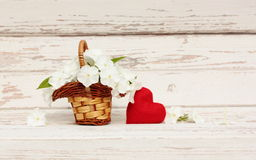 Phlox flowers in basket and heart Royalty Free Stock Photo
