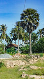Phnom- Penhstadtskyline, Kambodscha Lizenzfreie Stockbilder