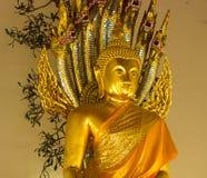 pho του Βούδα wat Στοκ Φωτογραφία