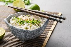 Pho ga, vietnamese chicken rice noodle soup stock image