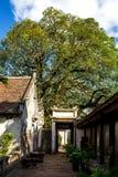 Pho Minh Temple Stock Afbeeldingen