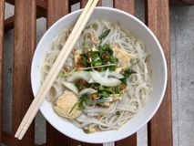 Pho - Vietnamese Chicken Noodle Soup royalty free stock photos
