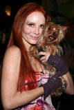 Phoebe Price royaltyfria foton