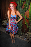 Phoebe Price Royalty Free Stock Image