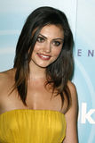 Phoebe Tonkin Royalty Free Stock Images