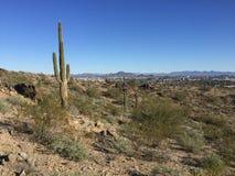 Phoenix, Αριζόνα από το νότιο βουνό Στοκ Εικόνες