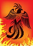 Phoenix. Vector illustration of phoenix on red background Stock Images
