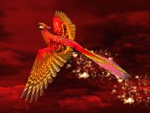 Phoenix. Wonderful phoenix through a red sky Royalty Free Stock Images