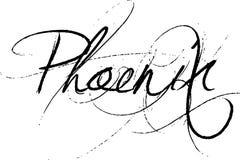 phoenix Foto de Stock Royalty Free