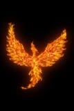 Phoenix ardiendo aislada sobre negro Imagen de archivo libre de regalías