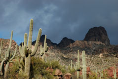 Phoenix, Arizona. Apache Trail scenery Stock Photography