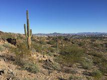 Phoenix, Arizona desert landscape and city skyline from South Mountain Stock Images