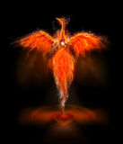 Phoenix bird. A fiery phoenix bird with wings out stretched rising from a spiral surface.  Lifeforce sparks from the body of the bird Stock Image