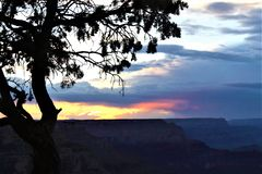 Phoenix bird cloud over canyon. This dramatic cloud hovers over the Grand Canyon at sunset. Approaching storm clouds cast blue and purple shadows in the chasms stock image