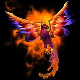 Phoenix Bird. The Phoenix bird is a legend and symbol of renewal and new beginnings Royalty Free Stock Image