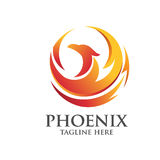 Phoenix circle logo concept. Elegant phoenix logo concept suitable for all kind business accounting legal management sport security etc Royalty Free Stock Photos