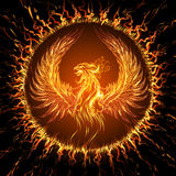 Phoenix. In circular frame. Illustration in fantasy style Royalty Free Stock Photo