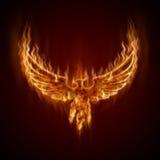 Phoenix del fuego con las alas Foto de archivo libre de regalías
