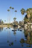 Phoenix downtown as seen from Encanto Park Lake, AZ Stock Photography