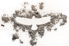 Phoenix, Eagle Bird Drawing In Ash As Fire, Birth, Extinction, L Stock Images