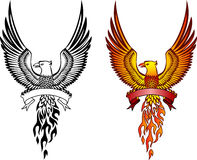 Phoenix and emblem Royalty Free Stock Image