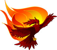 Phoenix on Fire. Red phoenix rising from flames Royalty Free Stock Image