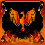 Phoenix with Fire and Decorative Border Stock Image