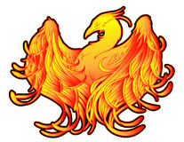 Phoenix Fire Tattoo. Fiery phoenix illustrations with a black outline Stock Photo