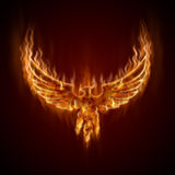 Phoenix from fire with wings Royalty Free Stock Photo