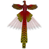 Phoenix Firebird. The Phoenix firebird is a mythical symbol of regeneration or renewal of life Stock Image
