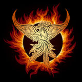 Phoenix in Flame. The Phoenix flying in ring of fire Stock Photo