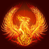 The Phoenix. Illustration with burning phoenix drawn in heraldic style