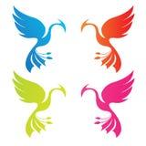 Phoenix kolor Zdjęcia Stock
