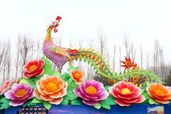 Phoenix lantern Stock Image