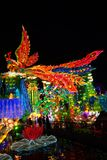 Phoenix Lantern in Zigong, China. Lanterns, also known as flower lanterns, is a popular traditional Chinese folk arts and crafts as New Year celebration Royalty Free Stock Image