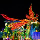 Phoenix Lantern in Zigong, China. Lanterns, also known as flower lanterns, is a popular traditional Chinese folk arts and crafts as New Year celebration Stock Images
