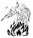 Phoenix Stock Image