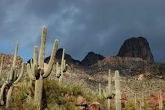 Phoenix, o Arizona. Cenário da fuga de Apache Fotografia de Stock