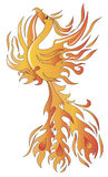 Phoenix ptak Zdjęcia Stock