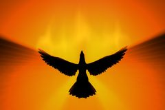 Phoenix rising. In fire 3d concept Stock Photography