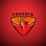 Phoenix Rising Abstract Vector Logo Template. Flying Fire Bird Illustration in a Shield.   Royalty Free Stock Photo