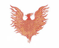 Phoenix Rising!. Phoenix rising from the ashes. Hand draw art vector illustration