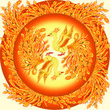 Phoenix. Two phoenixes in a yellow circle vector illustration