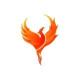 Phoenix-Vektor-Schablone Stockbilder