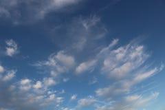 Phoenix-Winter Lizenzfreie Stockfotografie