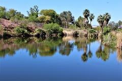 Phoenix-Zoo, Arizona-Mitte für Erhaltung der Natur, Phoenix, Arizona, Vereinigte Staaten lizenzfreies stockbild