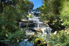 Phon Pob Waterfall, Phukradung National park Stock Photo