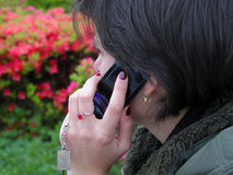 Phone discussion Royalty Free Stock Image