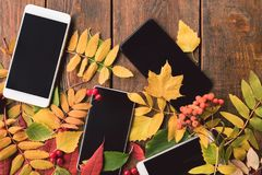 Phone e-commerce advertisement concept. Autumn leaves on wooden background Royalty Free Stock Photo